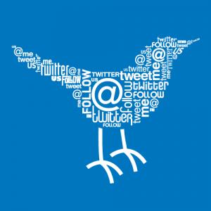 twitter-bird-anti-truetwit-service-300x300